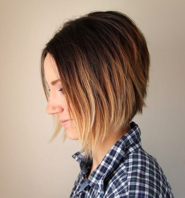 Bob Hairstyles Suitable on Everyone Short ombre bob cut