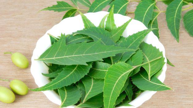 Tips and Tricks for getting rid of dandruff-neem leaves