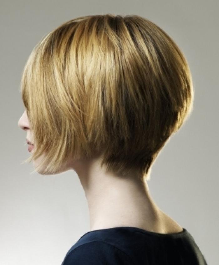 Short Hairstyles for women Layered balayage bob cut